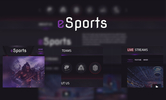 Dota2 eSport Template