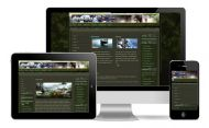 Warzone Green Wordpress Theme